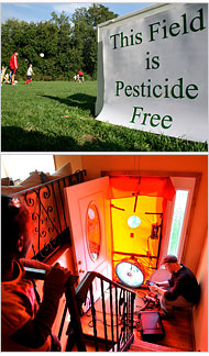 Pesticide Free Field and Energy Efficiency Improvements (Image from the New York Times)